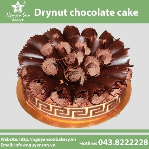 Drynut chocolate cake