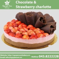 Chocolate & Strawberry charlotte