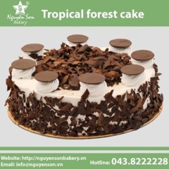 Tropical Forest cake