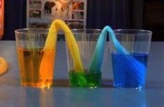 thí nghiệm vui nước có biết đi không nhỉ